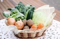 地元産 減農薬野菜