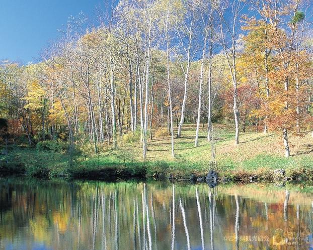 (盛岡市中心部から約40キロメートル、バスで1時間ほど)圧倒される景観「岩洞湖」(盛岡)