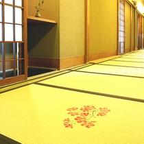 畳の廊下②