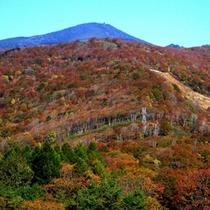 秋の裏磐梯(車で90分程)