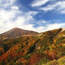 天狗の庭・・絶景の紅葉。例年では10月中旬〜11月下旬が見ごろです。(冬季閉鎖)