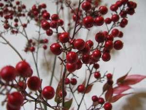 4. お花が無い季節に飾るものは天然のドライフラワーや木の実たち