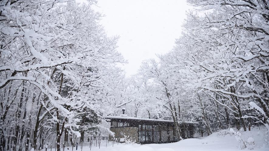 冬の雪のヨガハウス