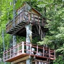 【ツリーハウス】*ペンション敷地内にあるオーナー手作りのツリーハウス