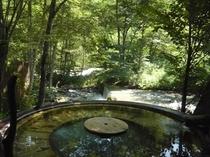 森の湯の夏