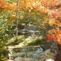 紅葉と森の湯