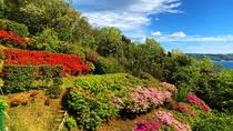 こころねの庭園(初夏)