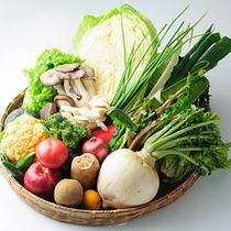 群馬の新鮮な野菜