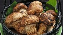 【秋期限定・松茸コース】季節限定の味覚を様々な調理法でお楽しみください。
