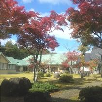 庭からの外観_秋
