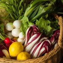 地元でとれた新鮮な野菜