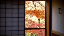お部屋から見える紅葉