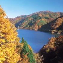 紅葉(九頭竜湖)