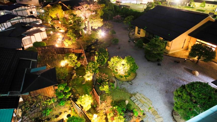 庭園のライトアップ。