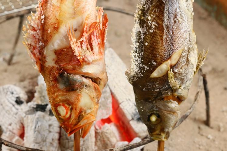 地魚の炙り