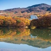 【秋の外観】鴫の谷地沼より
