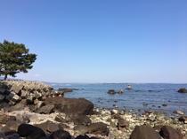 美しい松林と海まで徒歩3分、海浜砂湯まで徒歩5分です。絶景遊歩道をお楽しみいただけます。