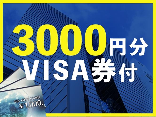 VISA券3000円プラン