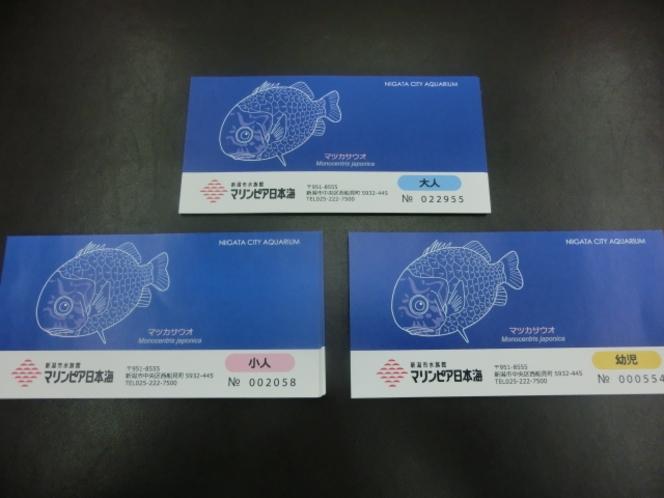 マリンピア日本海 入場券