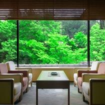 【山中温泉 花紫】ロビーから望む渓谷の新緑