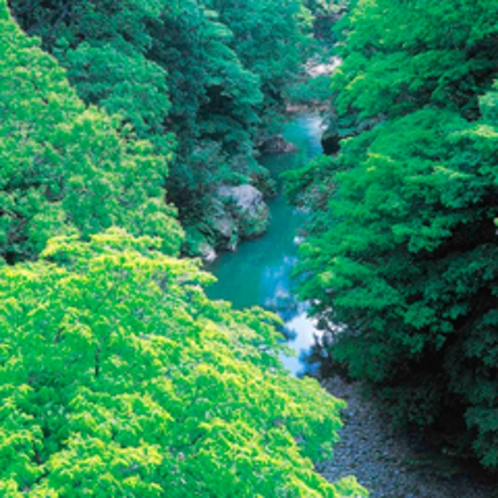 山中温泉観光名所【鶴仙渓】・夏景色 露天風呂からの眺望