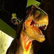 【白山恐竜パーク白峰】/お車で90分