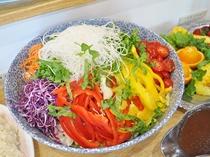 【朝食一例】朝からたっぷり野菜も摂れます。