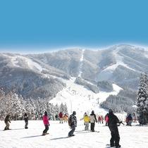 【スキージャム勝山】西日本最大級のスキーリゾート!最長滑走距離約5,800m!八鵬からは車で約30分