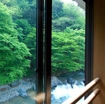 四万川を正面に臨む大迫力。源泉かけ流し露天付き客室