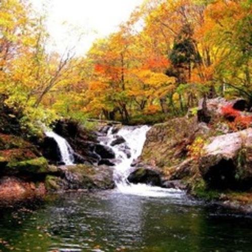 ★紅葉の逢滝