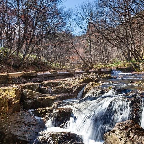 徒歩15分の逢滝