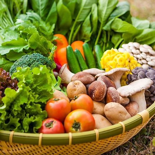雫石産のお野菜を豊富に取り扱っております