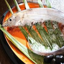 新鮮な、太刀魚。新鮮だからこそお出し出来るお造りを食べに来るリピーター多数♪