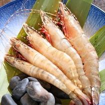 和歌山市内で有名な地元で水揚げされる足赤エビ。