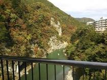 吊橋からの眺め