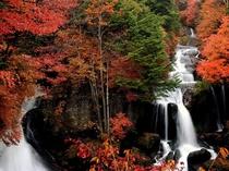 竜頭の滝 紅葉