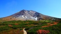 8月下旬になると気温が急激に下がり、山肌が黄色や赤色に色付きはじめ、日本で一番早い紅葉が始まります