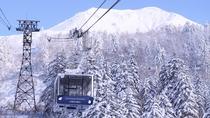白銀の世界の旭岳。雄大な大自然をお楽しみください。