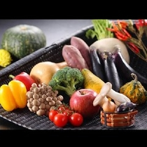 N 篭盛り野菜
