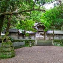 神聖な「竹野神社」で丹後の歴史を探る旅へ