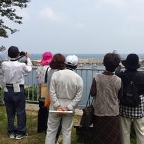 間人町歩き体験