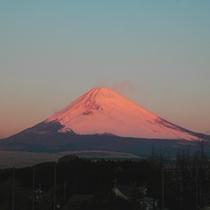 *富士山(朝)