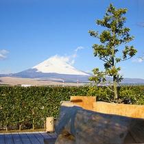 [天空の湯]からの富士山