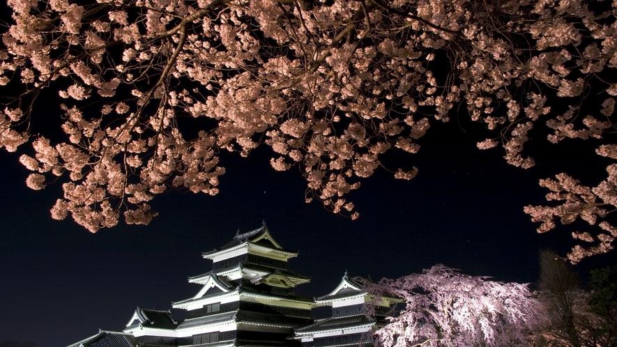 ■国宝松本城(桜)(写真提供:長野県観光機構)