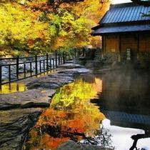 『般若の湯』秋・混浴・50畳/湯船に映る紅葉が美しい景観。