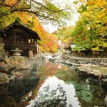 『子宝の湯』秋・混浴・200畳/色とりどりの木々に囲まれる秋の景色。