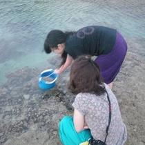 備瀬崎でお魚観察 水中スコープは全客室にあります。気軽にどうぞ!干潮時間のみ楽しめます(*^_^*)