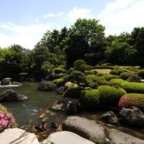 四季を彩る日本庭園