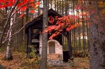 秋の陶芸窯