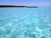 【大金久沖】まさに南国!人気のビーチです。